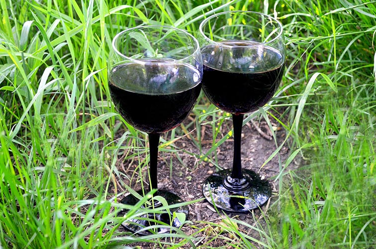 Каберне вино - характеристики и описание